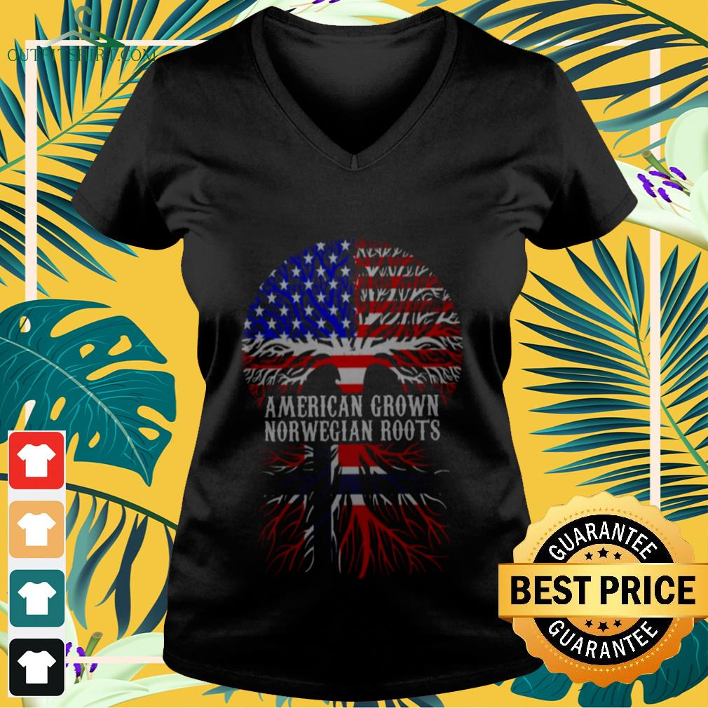 American Grown With Norwegian Roots  V-neck t-shirt