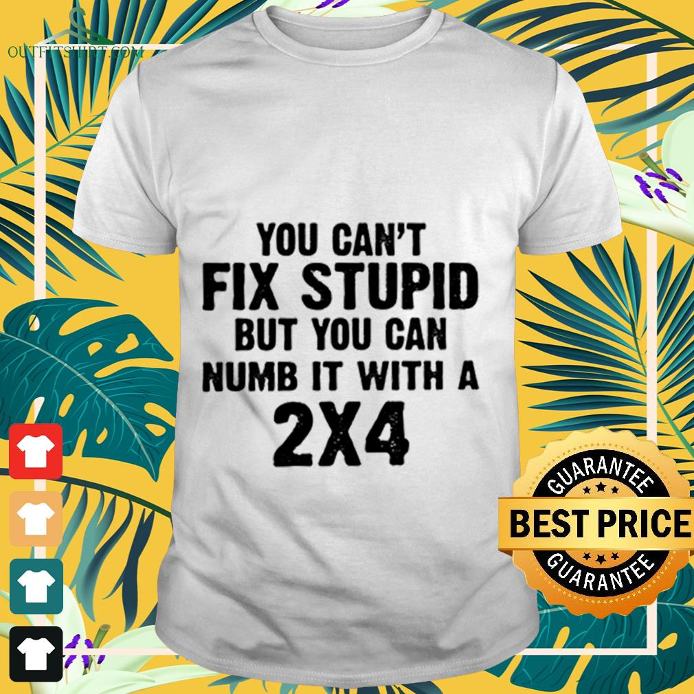 You can't fix stupid but you can numb it with a 2x4 shirt