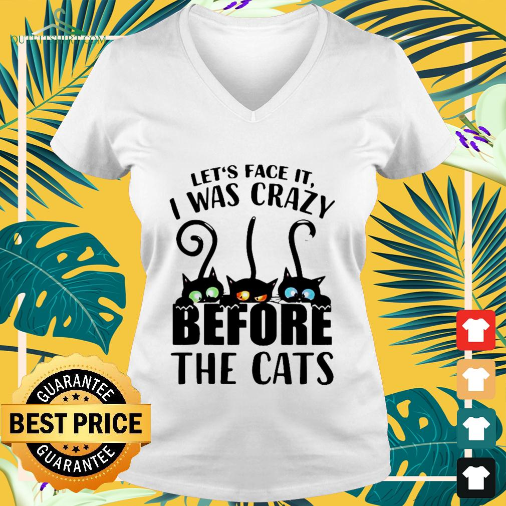 Let's face it I was crazy before the cats v-neck t-shirt
