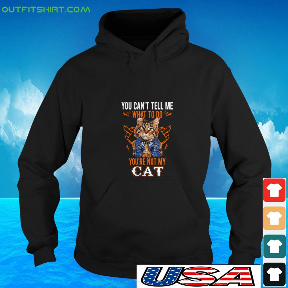 You can't tell me what to do you're not my cat hoodie