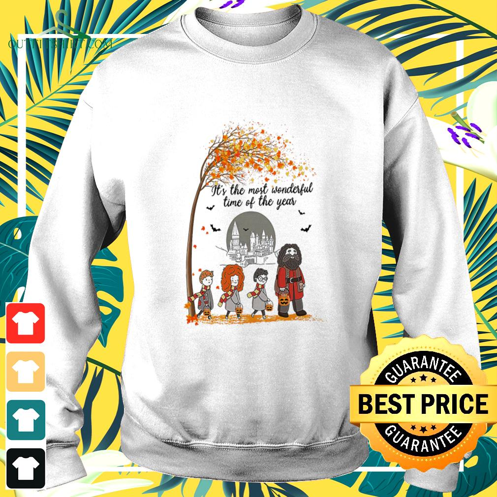 Harry Potter characters it's the most wonderful time of the year  sweater