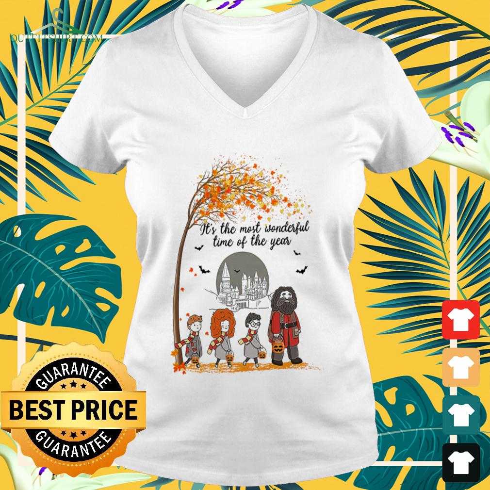 Harry Potter characters it's the most wonderful time of the year v-neck t-shirt