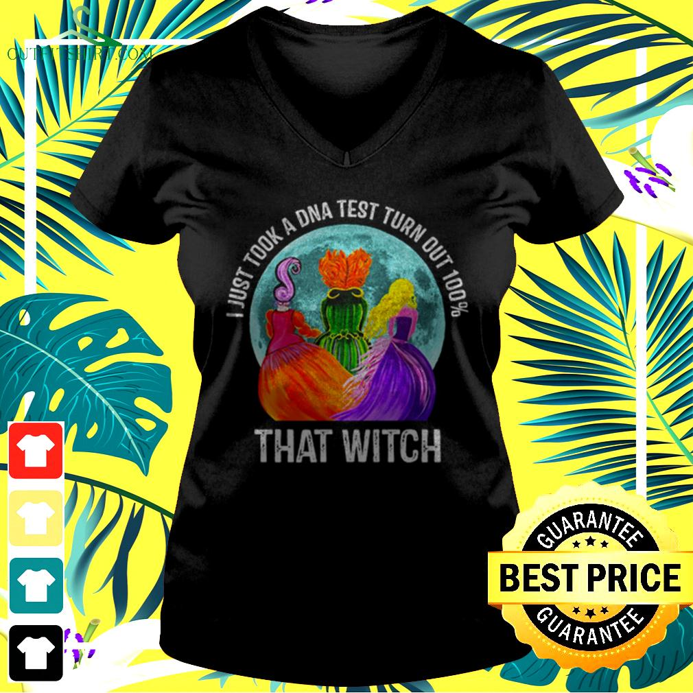 Hocus Pocus moon I just took a DNA test turn out 100' that witch halloween v-neck t-shirt