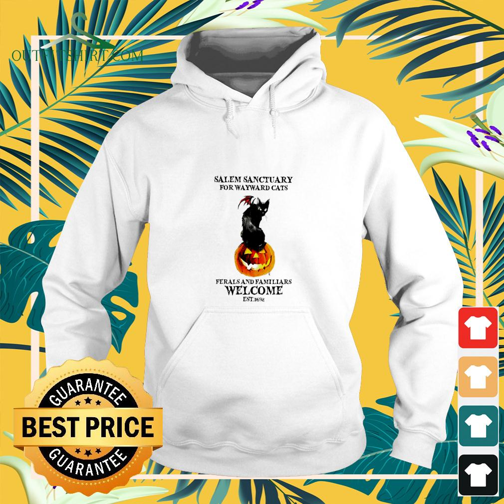Salem sanctuary for wayward cats ferals and familiars welcome est.1692 halloween hoodie