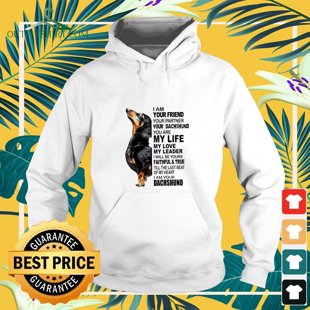 I am your friend your partner your Dachshund hoodie