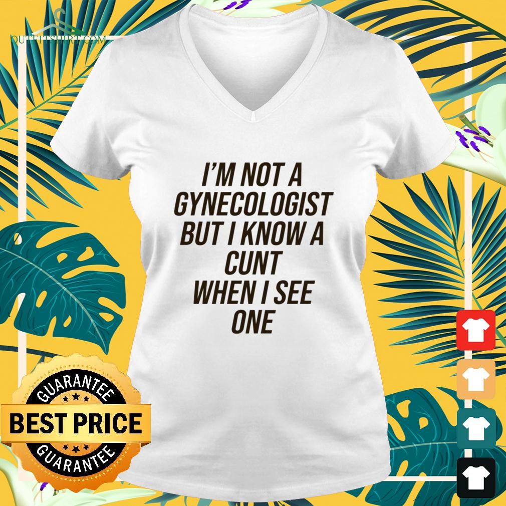 I'm not a gynecologist but I know a cunt when I see one v-neck t-shirt