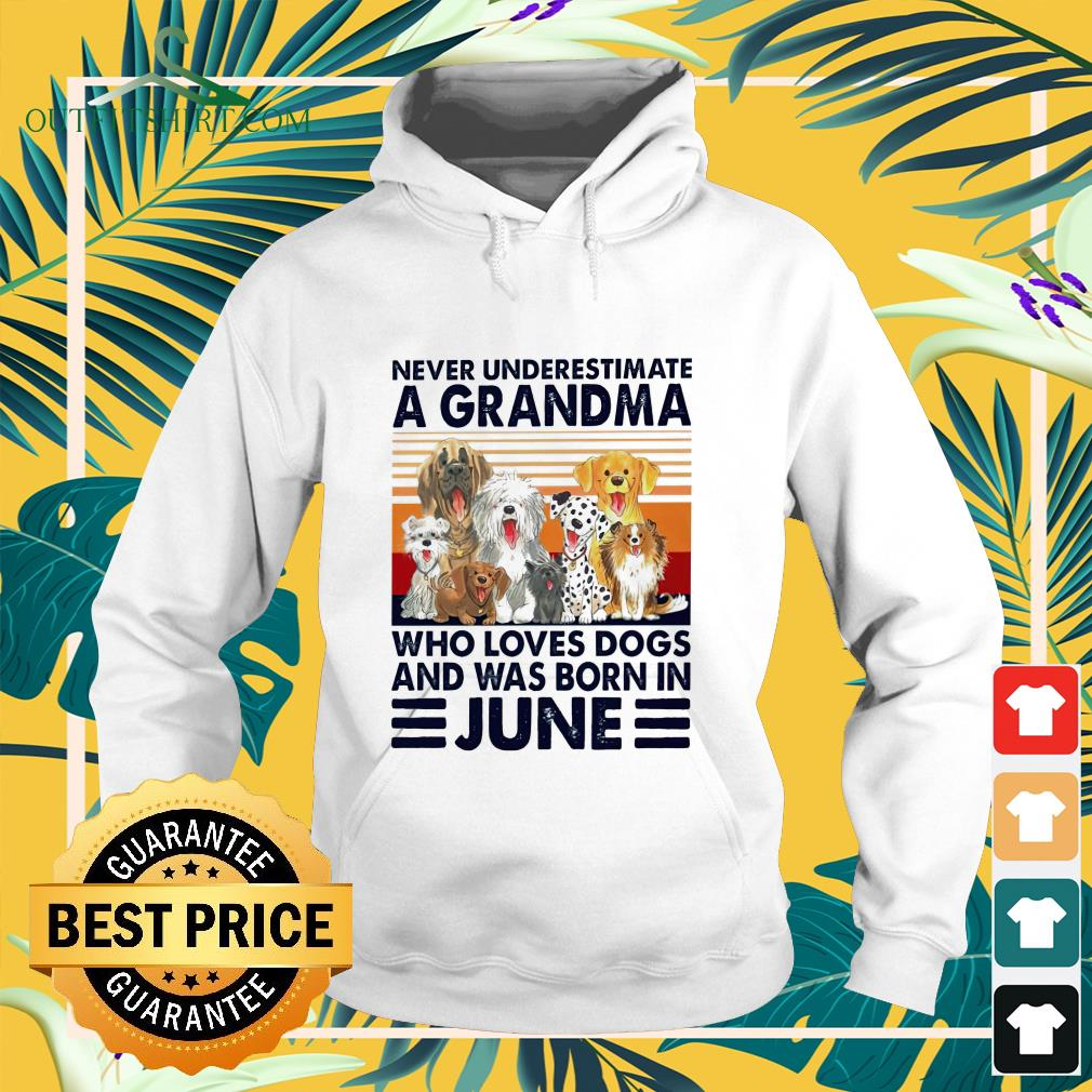 Never underestimate a Grandma who loves dogs and was born in June hoodie