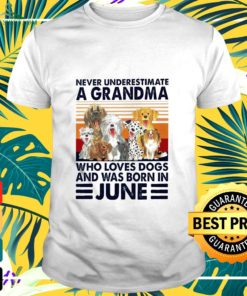 Never underestimate a Grandma who loves dogs and was born in June t-shirt