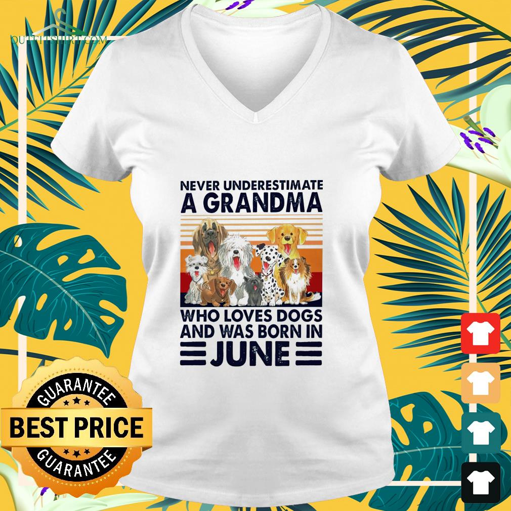 Never underestimate a Grandma who loves dogs and was born in June v-neck t-shirt