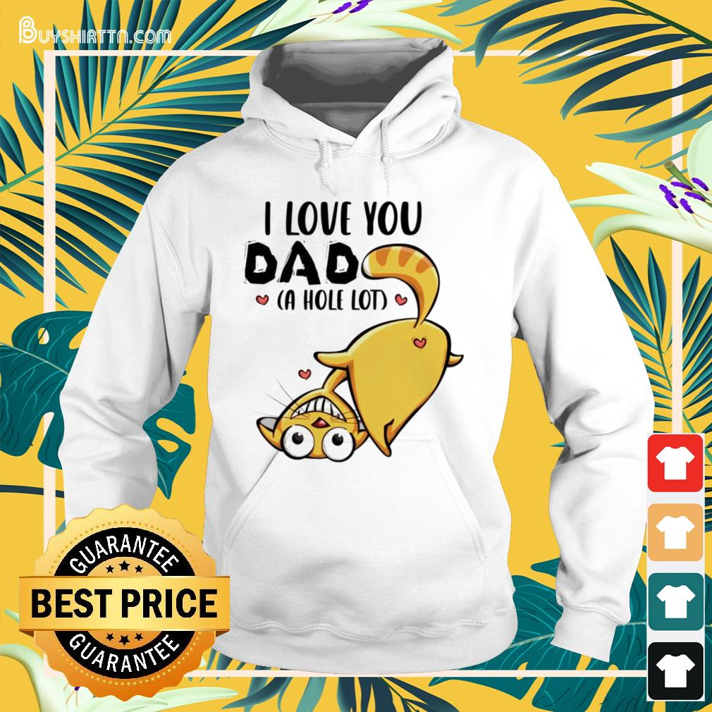 Cat I love you dad a hole lot Father's day Hoodie