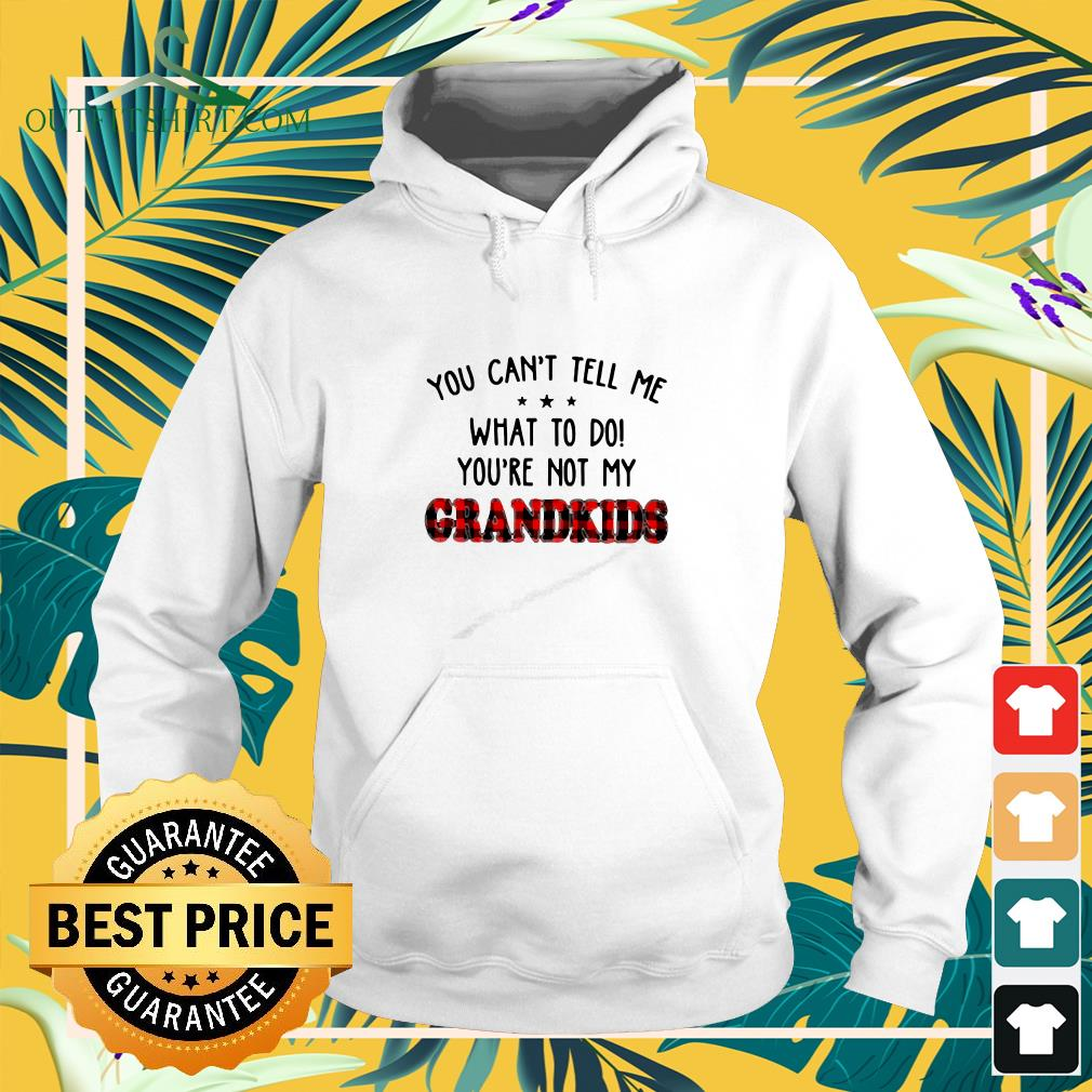 You can't tell me what to do you're not my Grandkids  hoodie