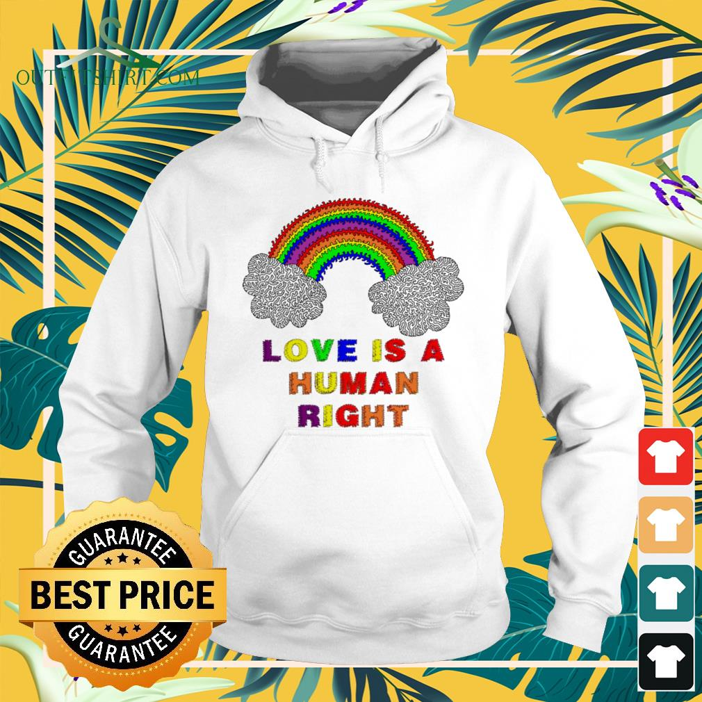 LGBT Pride month love is a human right hoodie