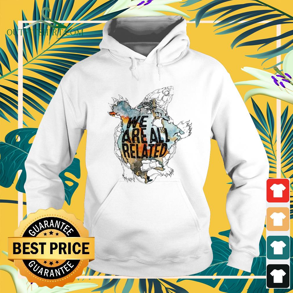 Turtle we are all related Hoodie