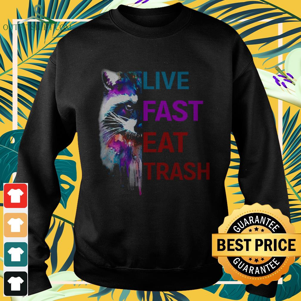 Colorful raccoon live fast eat trash sweater