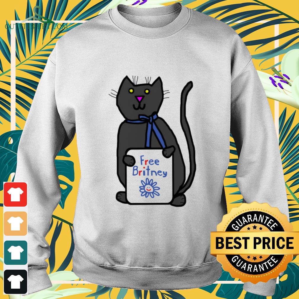 Cute cat with Free Britney sign sweater