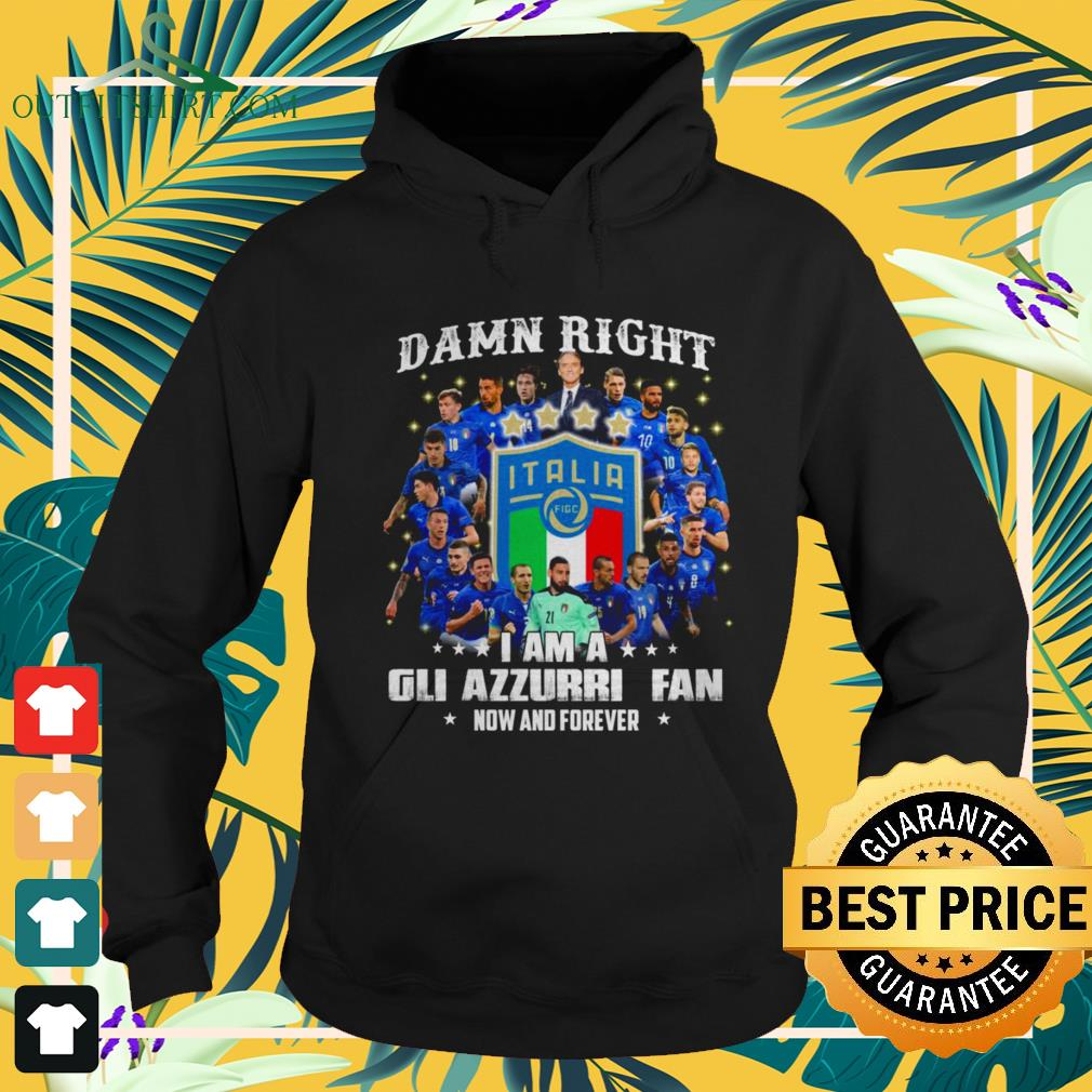 Damn right I am a Gli Azzurri fan now and forever hoodie